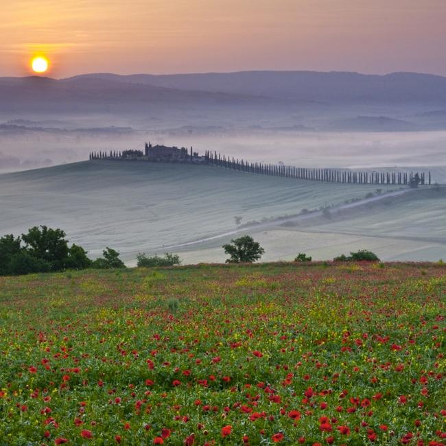 Tuscany Poppy Sunrise, San Quirico D'Orcia (Italy), 2008